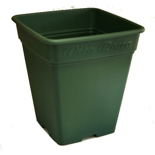 おシャレな鉢 アップルウェアー ロゼアスクエア260型 送料無料 メーカー直送の為代引不可 セットアップ 超人気 グリーン