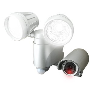 EARTH MAN 録画機能付センサー SLT-6LWVA【4907052630109:14215】