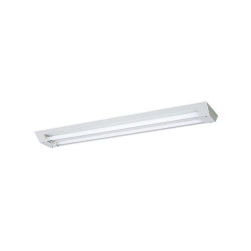パナソニック クリーンルーム向け照明器具 直付型 2灯用 箱型タイプ NNFJ42848LT9【4549077210951:14430】