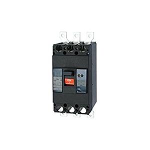 テンパール工業 Eシリーズ 経済タイプ 漏電遮断器 OC付 403EA35W2F【4950870116621:14430】