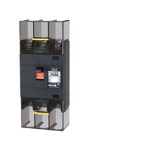 テンパール工業 Eシリーズ 経済タイプ 配線用遮断器 250A 補助スイッチ B253EA25A【4950870005413:14430】