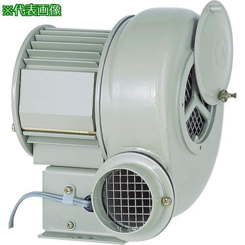 ■昭和 電動送風機 汎用シリーズ(0.25kW) SB-75 昭和電機(株)【1384201:0】