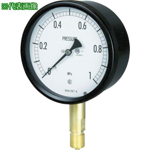 ■長野 密閉形圧力計 A枠立型 Φ100 最小目盛0.010 BE10-131-0.6MP 長野計器【1576119:0】
