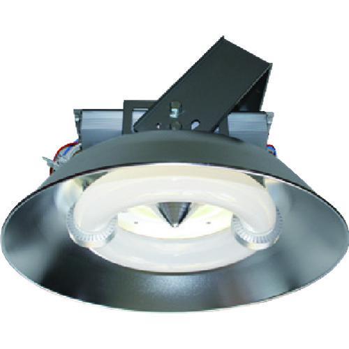 ■ELI LAMP PL-564A-CC260W-A 屋内用  003454 【1609198:0】