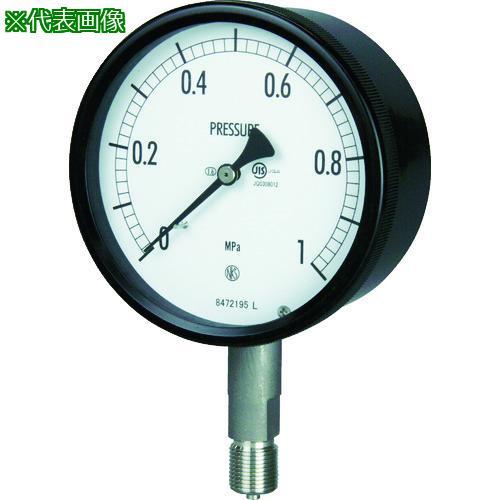 ■長野 密閉形圧力計 A枠立型 Φ100 最小目盛0.005 BE10-133-0.25MP 長野計器【1693808:0】