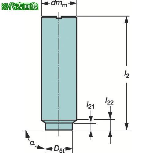 ■サンドビック コロミルEH円筒シャンクホルダ E20-A20-SS-120 【3589161:0】