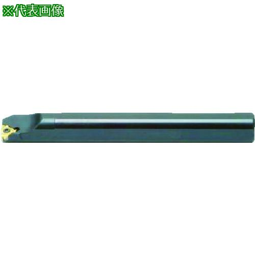 ■NOGA カーメックスねじ切り用ホルダー チップ刃幅6mm 全長100mm SIR0005H06 【4035216:0】