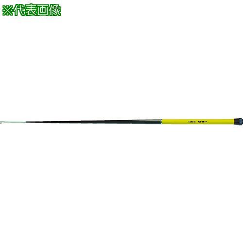 ■デンサン カーボンフィッシャー10M  DCF-10000 【4213076:0】