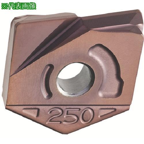 ■日立ツール カッタ用チップ ZCFW250-R1.0 PCA12M PCA12M(2個) 【4298071×2:0】