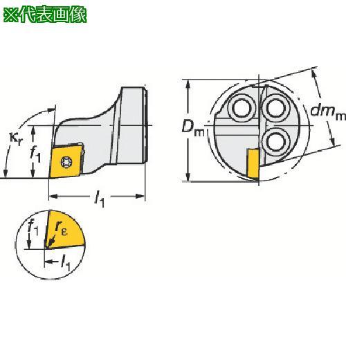 ■サンドビック コロターンSL コロターン111用カッティングヘッド 570-SCLPR-16-06 【6013058:0】