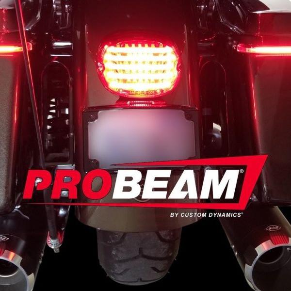 カスタムダイナミクス 【Custom Dynamics】PROBEAM ロープロファイル・LEDテールライト 下ナンバー用 レッド 2010-1410