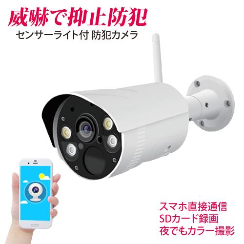 センサーライトカメラ カメラ付センサーライト 防犯カメラ センサーライト 玄関 庭 照明 ネットワークカメラ スマホ【CK-SLC01 センサーライト付カメラ】
