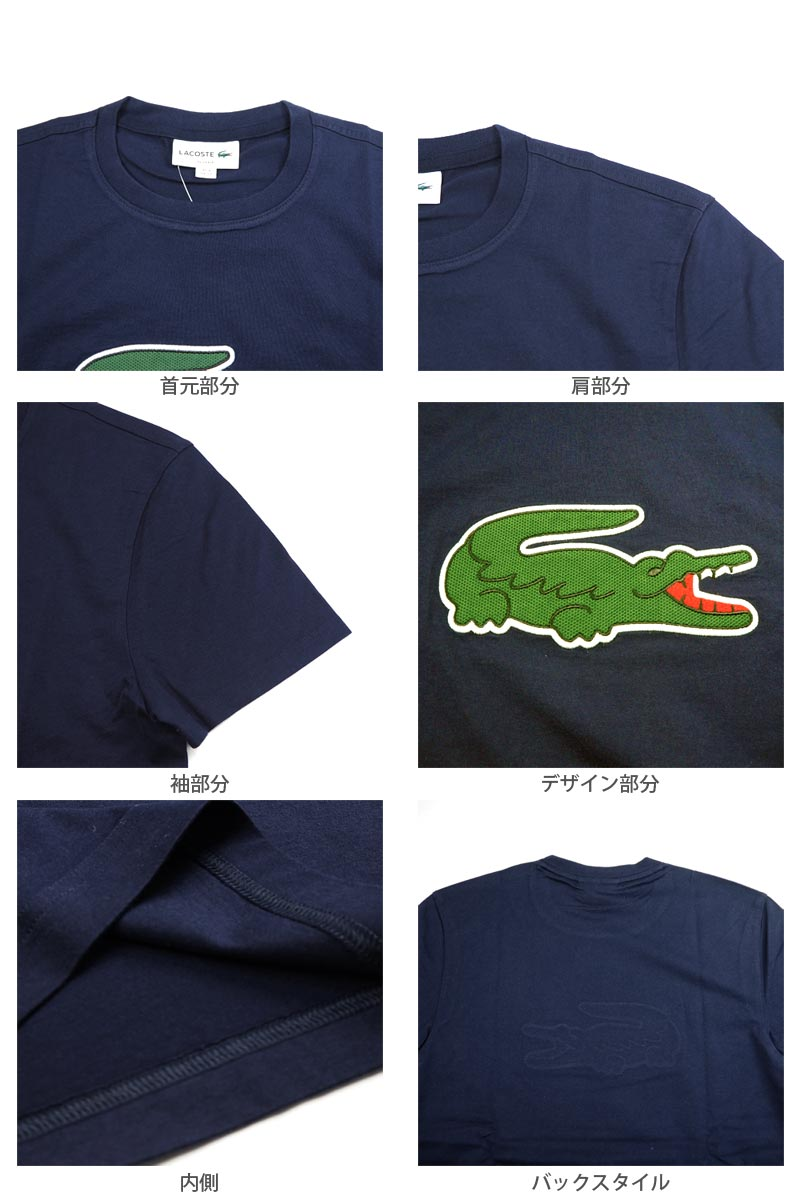 Lacoste Graphic Logo T-Shirt in Navy Blue
