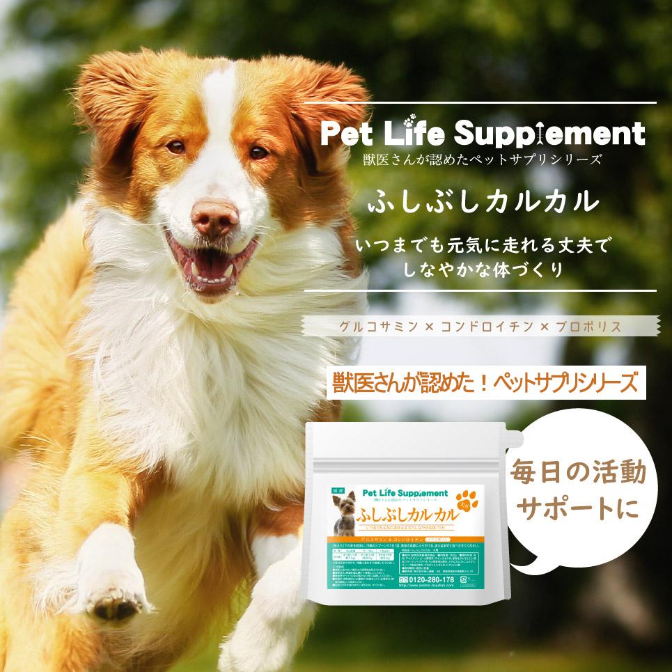 『犬のふしぶしカルカル5個セット』 ペットサプリメント 犬 ペット 愛犬 サプリ 動物 腸内細菌 オリゴ糖 善玉菌