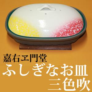 【クーポン獲得】【4980円以上送料無料】有田焼 ふしぎなお皿 スーパーデラックス 三色吹 蓋付長角皿 板付き