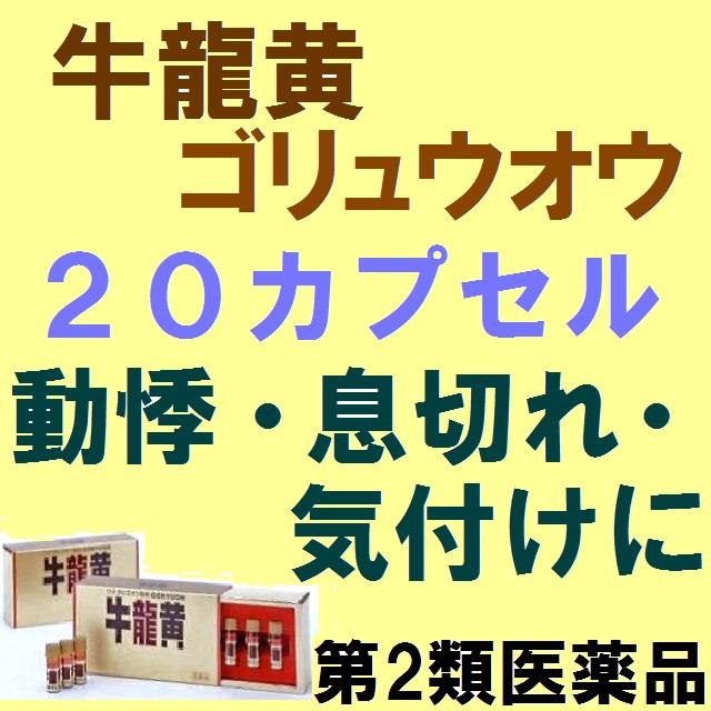 【第2類医薬品】《送料無料!!》牛龍黄 20カプセル(2カプセル10瓶)1箱