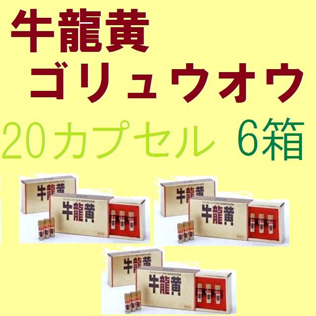 【第2類医薬品】《送料無料!!まとめ買いがお得♪》牛龍黄 20カプセル入 6箱