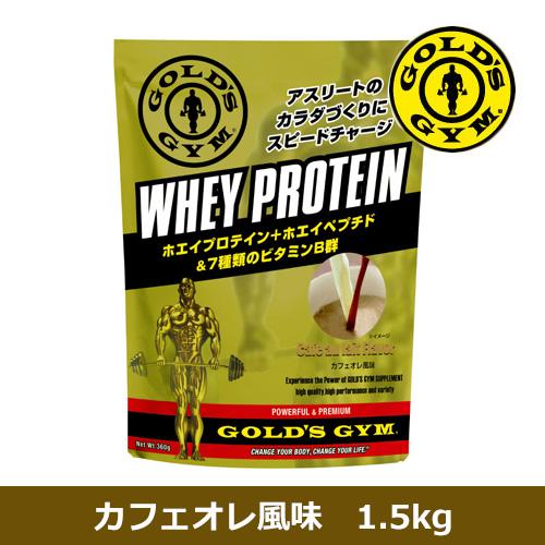 ゴールドジム ホエイプロテイン カフェオレ風味 1.5kg - THINKフィットネス
