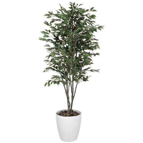 光の楽園(2020年版) ベンジャミンツリー 品番:156C380 高さ:160cm - アートクリエイション [光触媒][観葉植物]