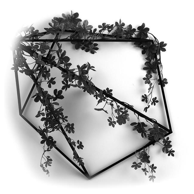 光の楽園(2020年版) 壁面緑化シュガーバイン 品番:2001A150 高さ:20cm - アートクリエイション [光触媒][観葉植物]