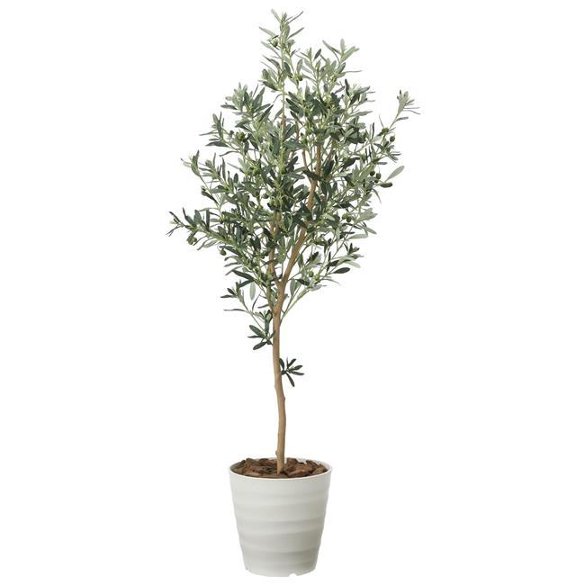 光の楽園(2020年版) オリーブツリー 品番:2022A300 高さ:160cm - アートクリエイション [光触媒][観葉植物]