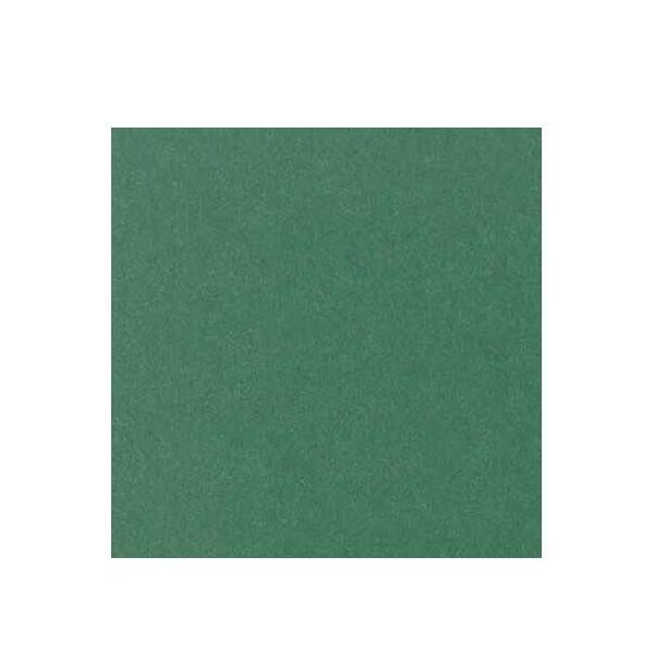 【直送品】【代引き不可】カセン和紙工業 プラカフィルム障子紙 片面 950mm×1850mm  深緑(グリーン) PR-106 2セットご注文後3~4営業日後の出荷となります