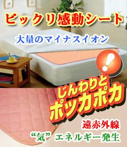 【期間限定クーポン】ビックリ感動シート シングルサイズ
