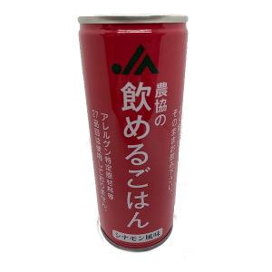 【限定クーポン】【直送品】【代引き不可】飲めるごはん シナモン風味×24本セット