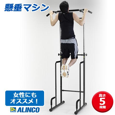 【ALINCO/アルインコ】 懸垂マシン ぶら下がり健康器 EX900T