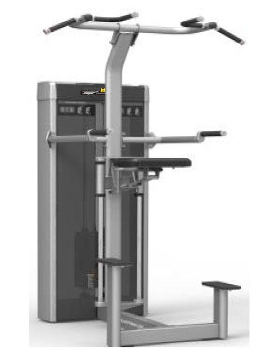 フィットネスジムマシンHEAT CAMPIONE Dip / Chin Assistディップ チンアシスト最新モデルの受注生産品となります