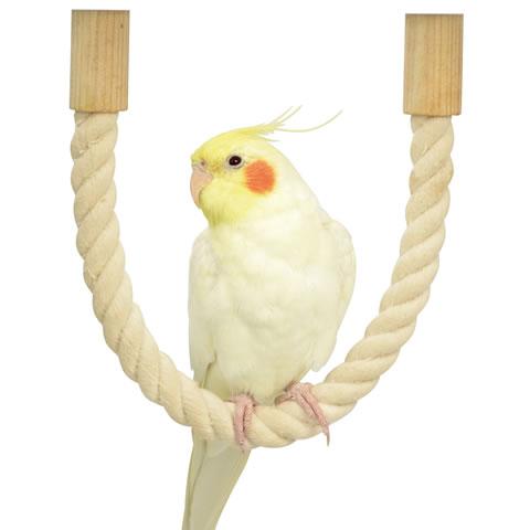 店舗 日曜日も14時まで出荷中 小鳥用コットンロープパーチ 文鳥 セキセイインコ ボタンインコ SANKO 最新 三晃商会 とまり木 ロープパーチ40 サンコー