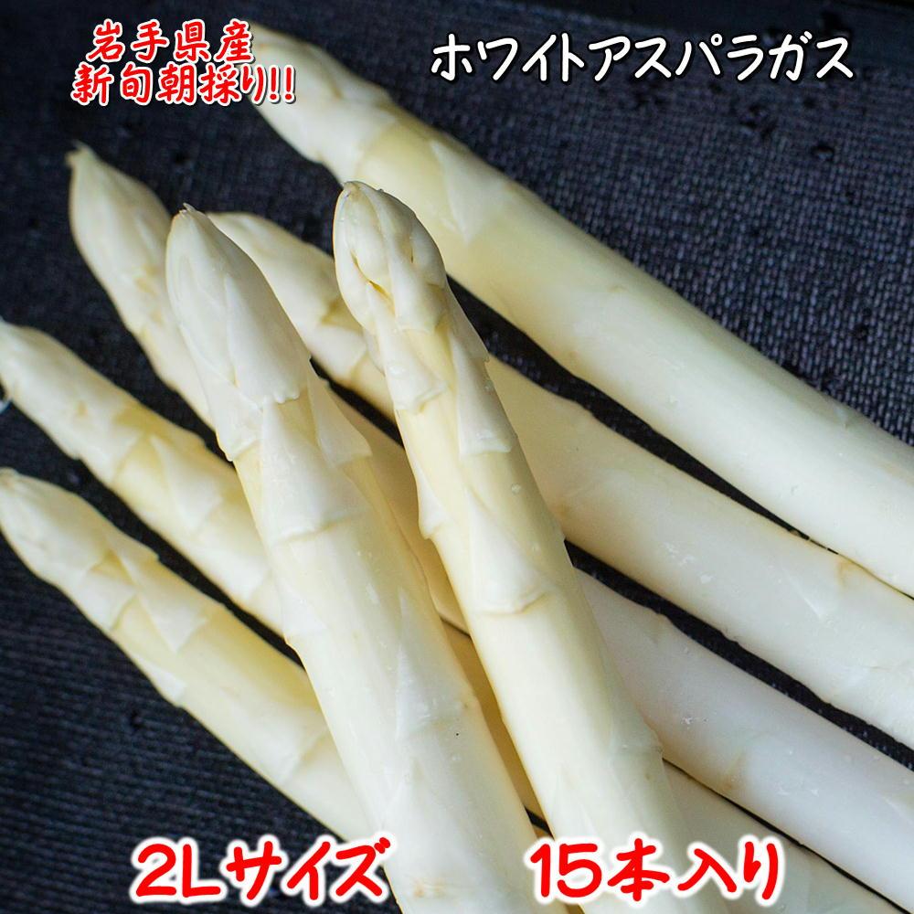 (387)白い果実 ホワイトアスパラガス(2Lサイズ)15本 期間限定