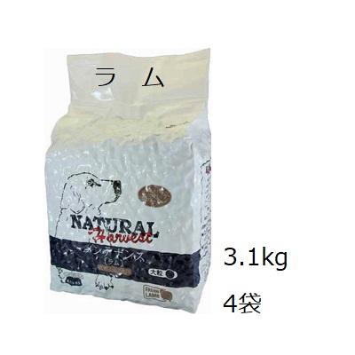 Natural Harvest ナチュラルハーベスト メンテナンス ラム大粒 4袋セット (3.1kgx4)+フィッシュ4ドッグムース100g【あす楽対応】【HLS_DU】