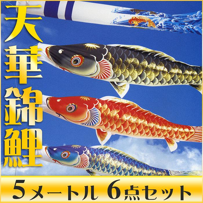 【送料無料】天泳ぐ華やかな鯉のぼり☆天華錦鯉 5M 6点セット【こいのぼり】