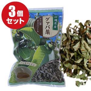 沖縄産グァバ茶100%使用 グァバ葉に含まれるポリフェノールが注目を浴びています ミネラル ビタミンCなども含まれ 美容や健康が気になる方に人気です 沖縄県産 三大野草 グァバ茶 100g 茶葉 ×3個セット グアバ茶 お土産 沖縄 グァバ グアバ ノンカフェイン 健康 みやげ 比嘉製茶 グァバ葉ポリフェノール お茶 激安卸販売新品 血糖値 格安店