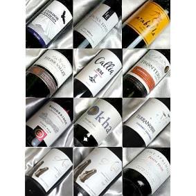 ■□送料無料□■ 自然派3本入り 新世界 赤ワイン12本セット Ver.19 濃いもあれば優しいもあり【赤ワインセット 12本セット】【送料込・送料無料】【飲み比べS】【 通販】【オンライン飲み会】