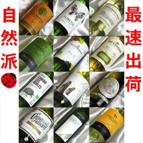 ■□送料無料□■自然派5本入り 白ワインばかり12本セットフランス、イタリア、スペイン、ニューワールドを飲み比べ ギフトセット・贈り物にも、デイリーにも【白 12本セット】【白ワインセット】