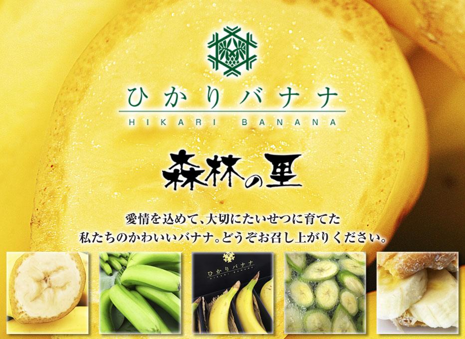ひかりバナナ 森林の里:完全に農薬を使わない国産バナナ