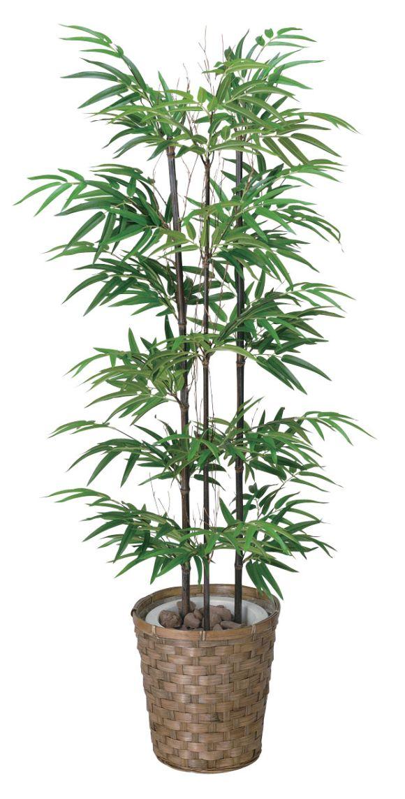 光触媒 光の楽園 黒竹 高さ1.2m 幹:天然竹【インテリアグリーン フロアタイプ 人工観葉植物 大型タイプもあります】