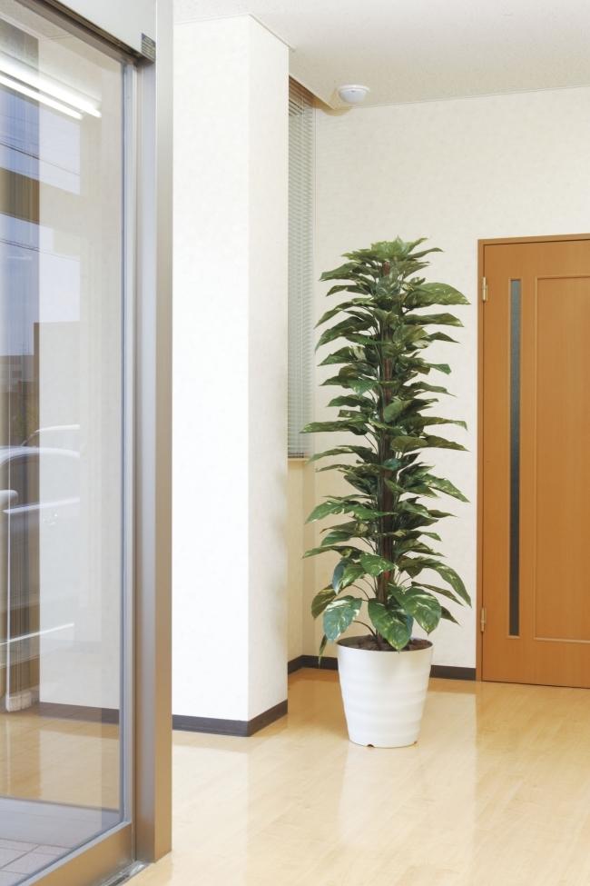 光触媒 光の楽園ジャイアントポトス 高さ1.8m【大型 人工観葉植物】