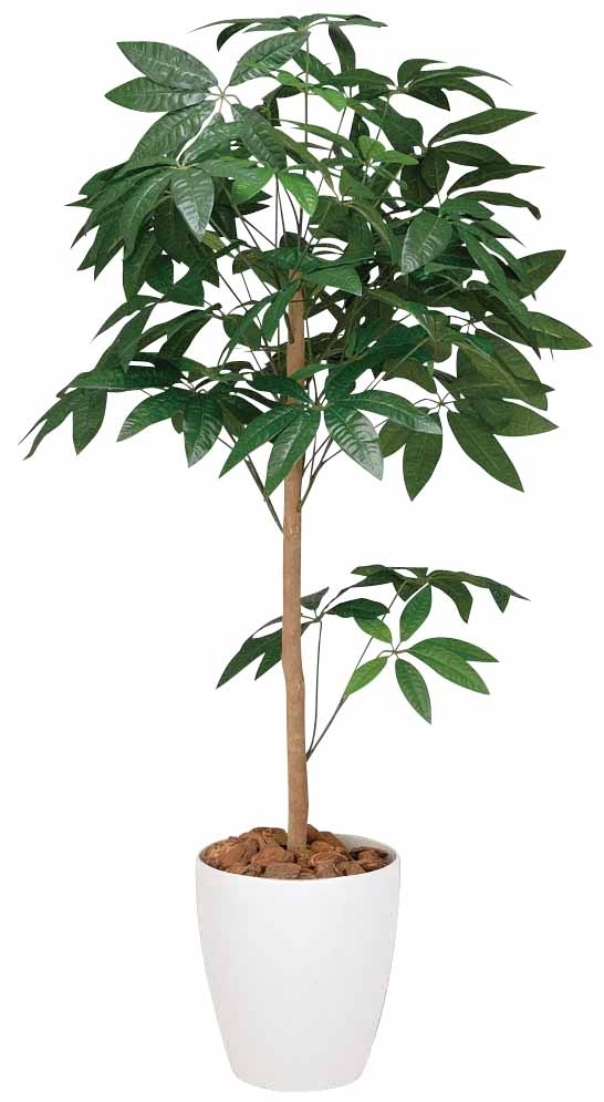 光触媒 光の楽園パキラトピアリー 高さ1.5m【インテリアグリーン 大型 人工観葉植物】