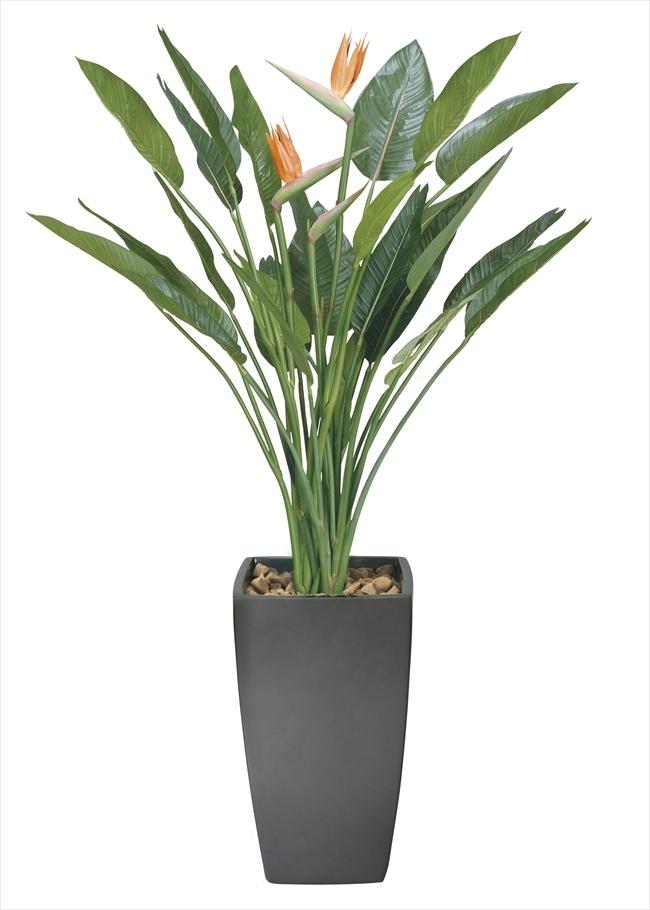 光触媒 光の楽園 アートストレチア花付 高さ1.8m【インテリアグリーン 人工観葉植物 大型】