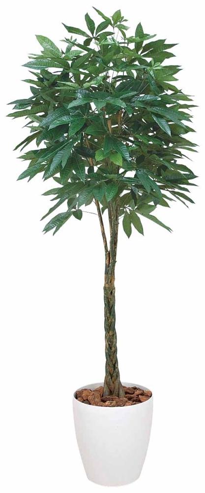 光触媒 光の楽園 パキラ 高さ1.6m【インテリアグリーン 人工観葉植物 大型】