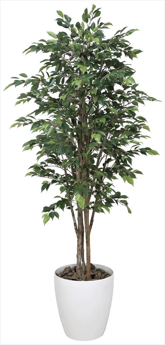 光触媒 光の楽園 ロイヤルベンジャミン 高さ1.6m【インテリアグリーン 人工観葉植物 大型】