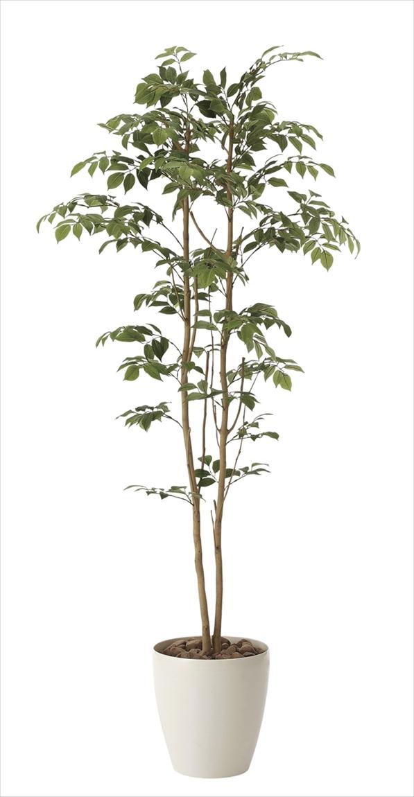 光触媒観葉植物 光の楽園 マウンテンアッシュ 高さ1.6m【インテリアグリーン 大型 人工観葉植物】