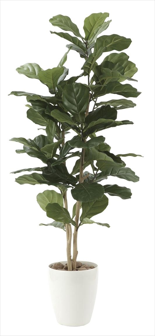 光触媒 光の楽園 カシワバゴム1.35m【インテリアグリーン 人工観葉植物】