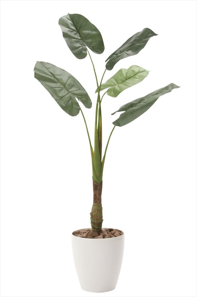 光触媒 人工観葉植物光の楽園 くわず芋1.35mインテリア フェイクグリーン