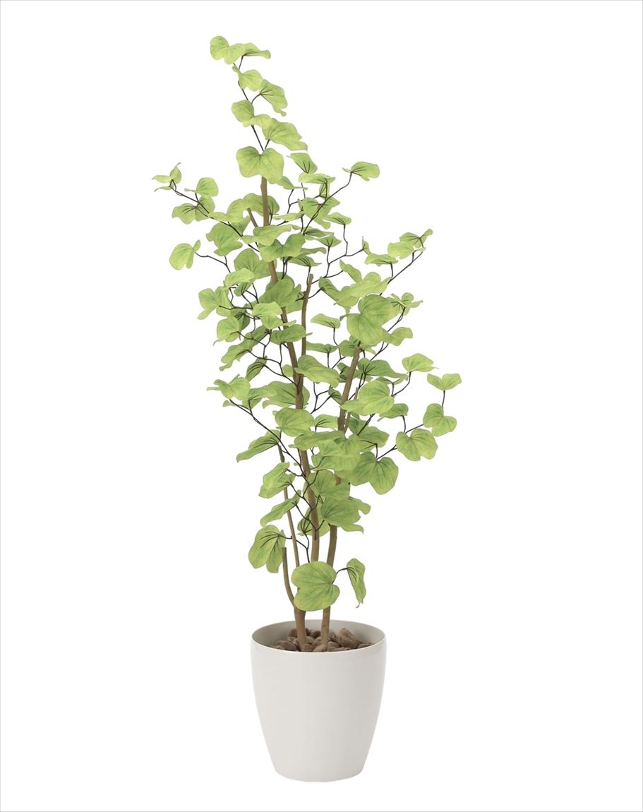 光触媒 人工観葉植物光の楽園 バウヒニア1.6mインテリア フェイクグリーン