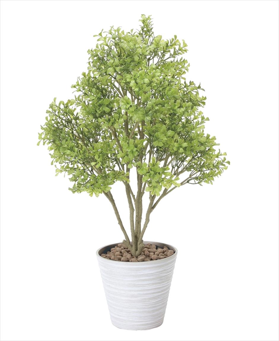光触媒 人工観葉植物光の楽園 ボックスウッドインテリア フェイクグリーン
