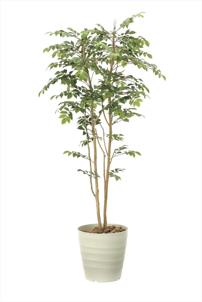 光触媒 人工観葉植物光の楽園 マウンテンアッシュ1.8mインテリア フェイクグリーン